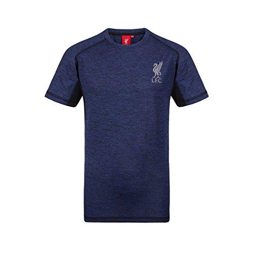 Liverpool FC Herren Trainingstrikot Aus Polyester - Offizielles Merchandise - Geschenk für Fußballfans - Königsblau - L