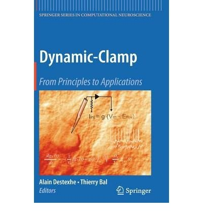 [(Dynamic Clamp )] [Author: Alain Destexhe] [Apr-2009]