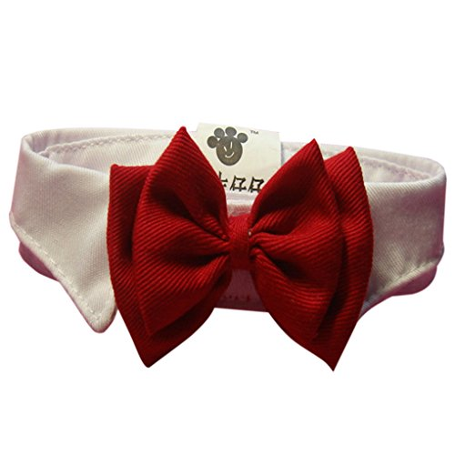 Befaith-Adorable-Dog-Cat-Pet-Chiot-Kitten-Toy-Bow-Tie-Cravate-Collier-Vtements-S