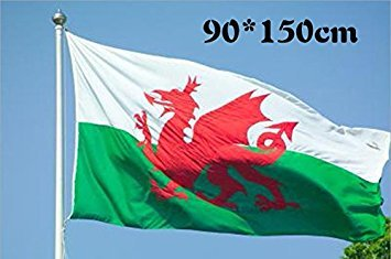 Honeysuck Wales National Flagge Walisischer Drache National Flagge (5ftx3ft)