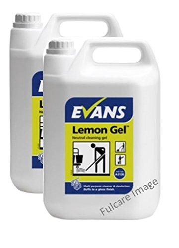 evans-long-lasting-lemon-fragranced-neutral-cleaning-gel-multi-purpose-cleaner-and-deodoriser-5ltr-x