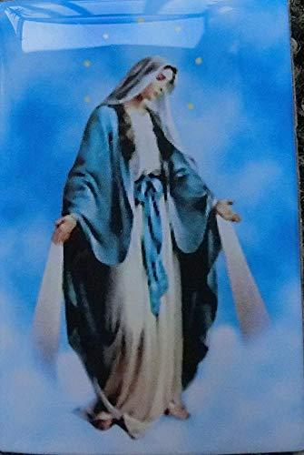 90.536.85004Magnet Magnet für Kühlschrank Kühlschrank mit Bild geharzte Jungfrau Maria