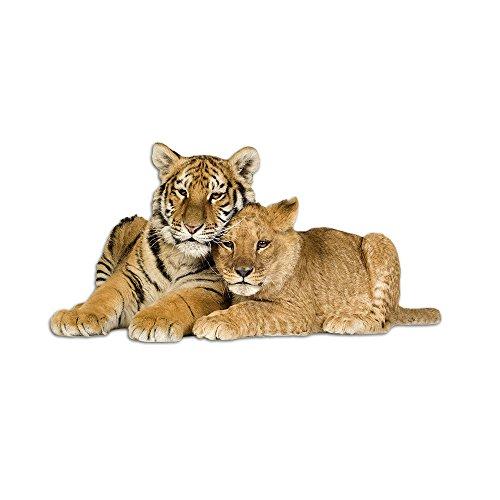 GRAZDesign Wandtattoo Tiger und Löwe - Home Dekoration modern liegend Kinderzimmer - Wandsticker Deko Aufkleber Tigerkopf Wilde Tiere / 98x50cm / 723011_50