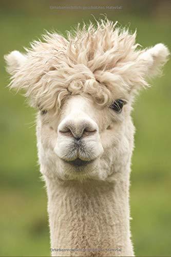 Alpaka Notizbuch: dotted (Punkteraster) Notizbuch / Tagebuch  mit Lama / Alpaka Bild als Motiv - 120 Seiten - Bilder Von Kostüm Für Haustiere