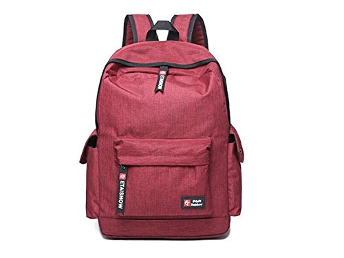 HOUHOUNNPO Perfect Anti-Theft Laptop Computer Backpack with USB Charging Port for Hiking Student Business Man Women-Red