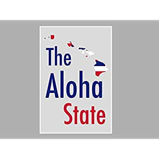 ArtsyCanvas Hawaii-the Aloha State Map Flag (Poster), 36 x 24