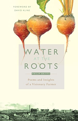 water-at-the-roots