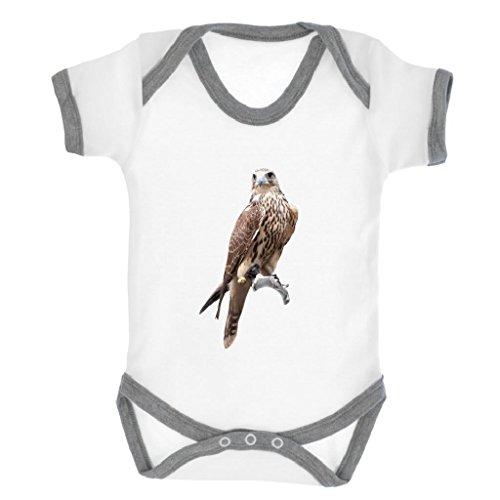 Braun Falcon Bild Baby Body mit Baby Heather Grau Kontrast Rand & Black Print (Kontrast-rand)