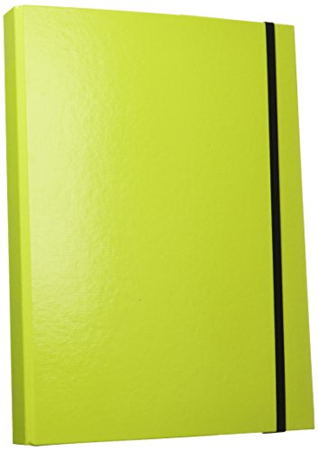 AULFES Sammelbox A4 TREND lime/21308-75