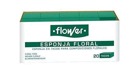 Flower 40507 - Esponja Floral