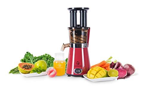 NUTRILOVERS Slow Juicer Entsafte...