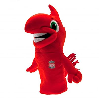 LIVERPOOL FC LITTLE LIVER