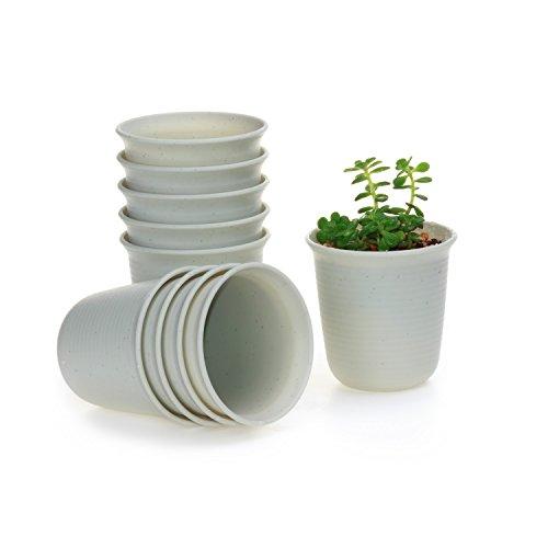 t4u-conjunto-de-10-largo-redondo-plastico-planta-maceta-suculento-cactus-planta-maceta-planta-conten