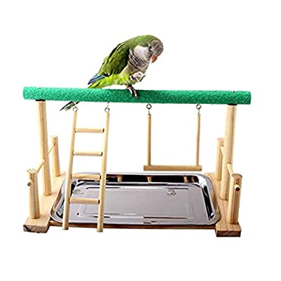 Balacoo Bird Parrot Play Stand Self Assemble Playground Wood Perch Gym Playpen with Ladder Swing Toys Exercise Play Standing Stick Color Random by Balacoo
