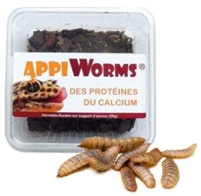 larves-vivantes-appiworms-50-gr
