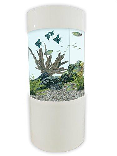 Design Aquarien Haustierprodukte Von A Bis Z