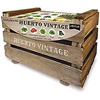 Huerto Urbano - Huerto vintage - Batlle