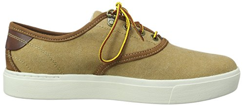 Timberland Amherst Oxford, Baskets Basses Homme Marron - Marron