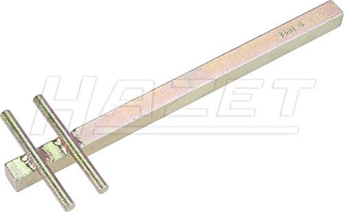 Preisvergleich Produktbild HAZET 3888-6  Zweilochmutterndreher