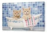 Decoración Gato Cartel de chapa Placa metal tin sign baño cachorro Letrero De Metal 20X30 cm