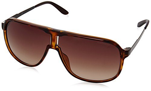 Carrera Herren NEW SAFARI J6 KME Sonnenbrille, Braun (Havana Choco/Brown Sf), 62