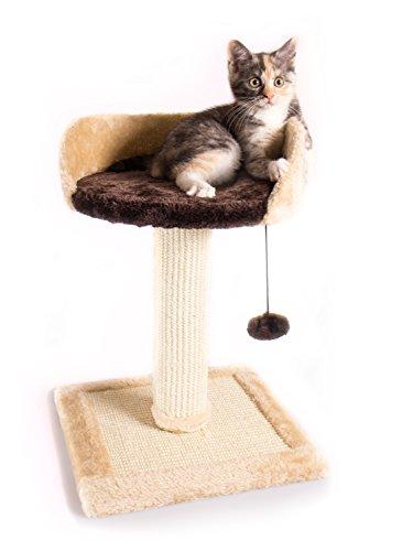Pet Paradise Katzenkratzbaum 'Chica' mit Kratzsäule, Spielzeug-Ball, Kuschel Lounge - Plattform für kleine Katzen