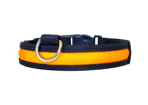 """Hunde Leuchthalsband LED Halsband Hundehalsband Hunde-Halsband """"Zandoo"""" Leuchthalsband inkl. Batterie für Hunde Katzen Haustiere in der Farbe orange Größe M (ca. 40-50 cm) NEU von der Marke PRECORN"""