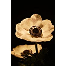 Romanic Anemone Flowers in Sepia Journal: 150 Page Lined Notebook/Diary