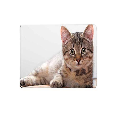 Tipo: cojín de ratón tamaño: 180 * 220 * 2m m paquete inckuded: 1 * CUT Pad de ratón cat