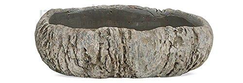 matches21 Pflanzschale Zementschale Betonschale oval Zement / Beton Schale Pflanzgefäß Steinoptik 19 cm
