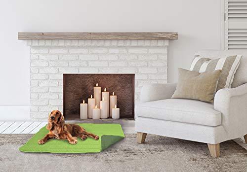 Elegant CSVERDEMELAVERDESCURO60 Cojín para Perros, Manzana y Verde Oscuro, 60x100cm