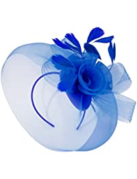 988e9f93dade0 Caprilite Wedding Races Party Fascinator Veil Net Hat With Cones and  Feathers Hatinator