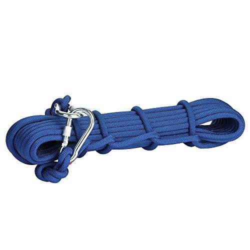 12KN 9.5mm Profi. Kletterseil Sicherheitsseil mit 2 Karabiner Karabinerhaken 10m, Farbe Auswählbar - Blau, 10 Meter (Habe Lanyard)