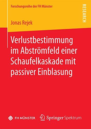 Abströmfeld einer Schaufelkaskade mit passiver Einblasung (Forschungsreihe der FH Münster) (Rejek)
