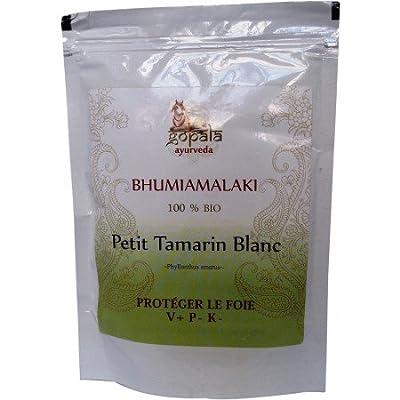 Organic Bhumiamalaki Powder Bhumi amalaki Phyllanthus amarus 250g Stone Breaker Liver Protection Liver Care Tonic Chronic & Acute Hepatitis