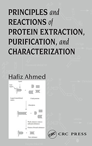 Principles and Reactions of Protein Extraction, Purification, and Characterization (English Edition)