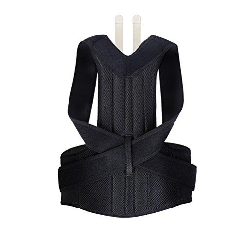 healifty Rücken Haltung Corrector Verstellbare Rücken Schulter Lendenwirbel Taille Unterstützung Gürtel für Erwachsene Größe L (schwarz)