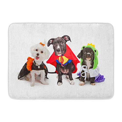 Badteppiche Outdoor/Indoor Fußmatte DREI süße kleine Hündchen in Halloween-Kostümen, einschließlich Hexe und Froschkönig Badezimmerdekor Teppich Badteppich ()
