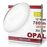LED Wandleuchte Deckenleuchte OPAL Wandlampe Deckenlampe 12 Watt Warmweiß