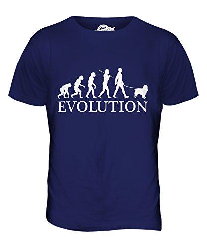 Candymix - Springer Spaniel Evolution Of Man - Mens T Shirt Top T-Shirt