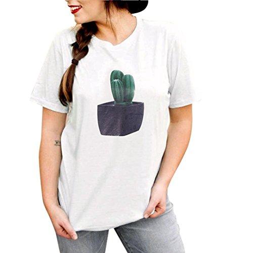 Gedruckt gestreifte kurzärmelige VENMO Frauen Mode Drucken Kurzarm O-Neck T-Shirt Baumwollbluse (Weiß, M) (Crinkle Kurzarm-bluse)