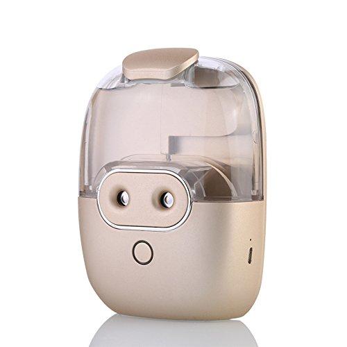 Spray-Luftbefeuchter Nano-USB-Doppelkopfsprühbefeuchterauto-Luftreinigungs-Schönheitsartefakt, Champagner