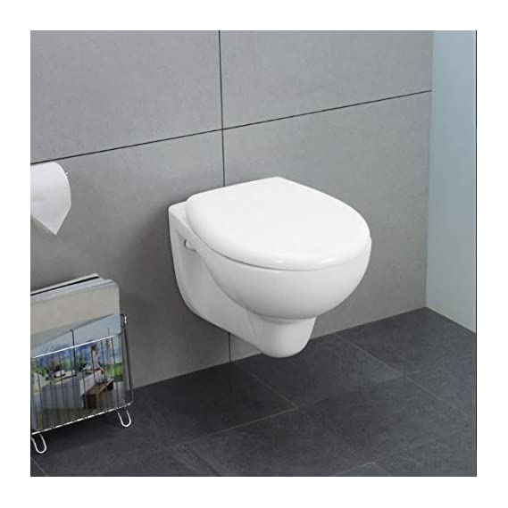 Ceramic Wall Hung/Wall Mounted Water Closet with Hydraulic (Soft Close) Seat Cover (White)