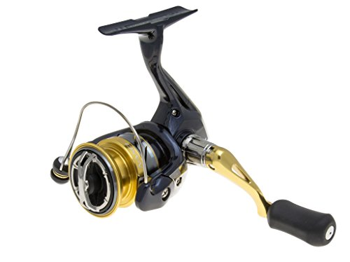Shimano Nasci 1000 FB, Spinning Angelrolle mit Frontbremse, NAS1000FB