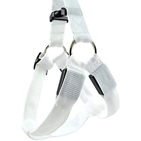 QHGstore Dog Pet Led Harness Collare di sicurezza Luce Pet fino Notte guinzaglio di corda Cintura bianca XS