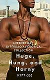 Huge, Hung, and Horny: Intense Gay Interracial Erotica Collection (English Edition)