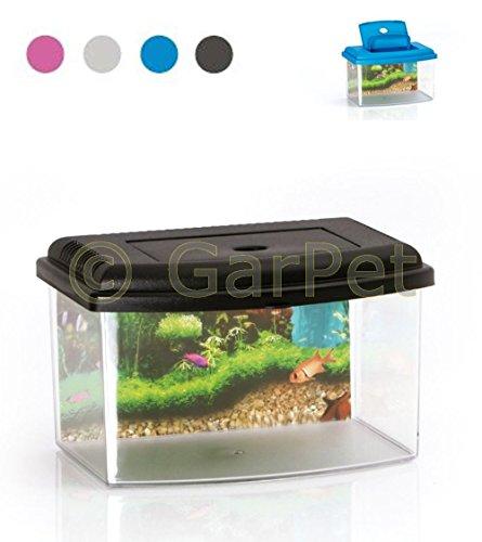 Nano Aquarium Acryl Terrarium Kunststoff Plastik Garnelen Aufzucht Becken Mini (Gr.2, grau) (Kunststoff Aquarium)