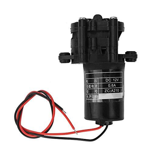 12/24 V DC Solarkorrosionsbeständige Micro-Wasserpumpe Wassersprühmopp Micro-Wasserpumpe(12V) -