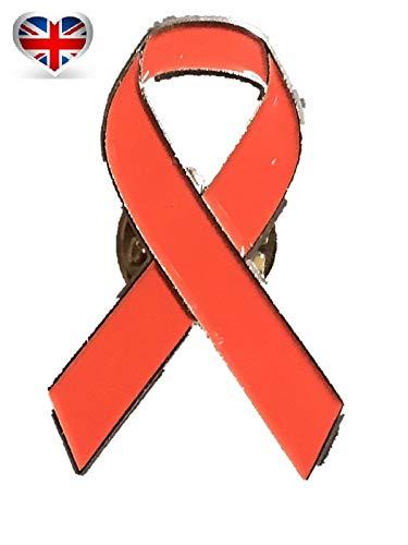 UK British Aids Brosche HIV Krebs mit roter Schleife