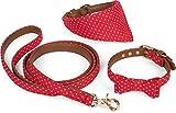 Puccybell Retro Punkte Hundehalsband mit Tuch, Schleife und Hundeleine (1,2m), 3-teiliges Set aus Bandana und Fliege Halsband mit Leine für kleine und mittelgroße Hunde HLS006 (M, Rot)